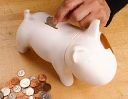 Dog coin bank