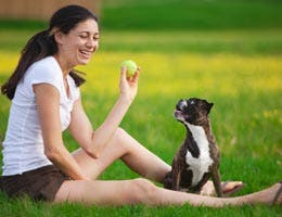 Woman playing catch with dog