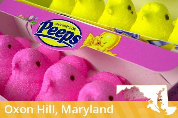 Maryland (and other states): Peeps store   William Thomas Cain/Getty Images