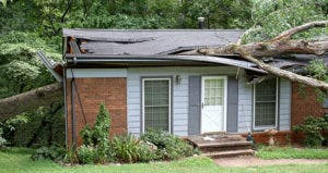Fallen large white oak tree through the roof of a small house © J. Bicking/Shutterstock.com
