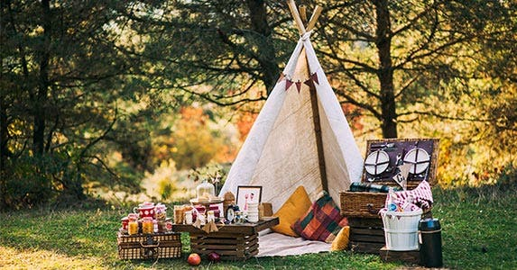 Gourmet picnic in the park © Versta/Shutterstock.com
