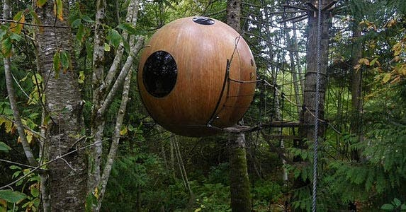 Rain forest redux | Photo courtesy of Free Spirit Spheres