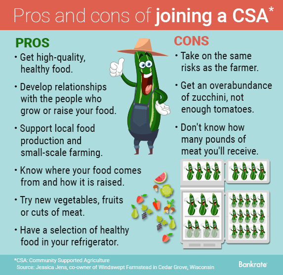 Pros and cons of CSAs © Bigstock