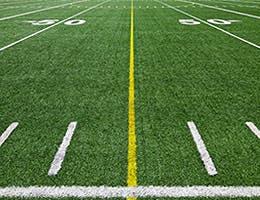 Turf grass management © Benoit Daoust/Shutterstock.com