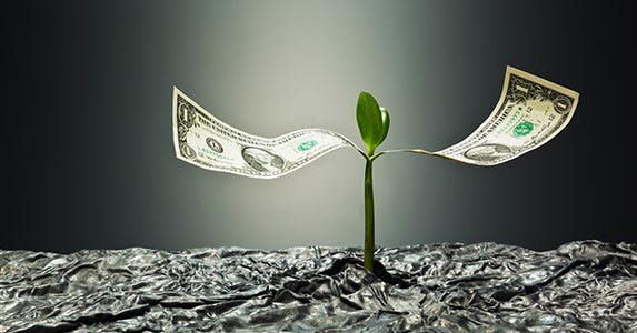 How the money grows | Yuji Sakai/DigitalVision/GettyImages