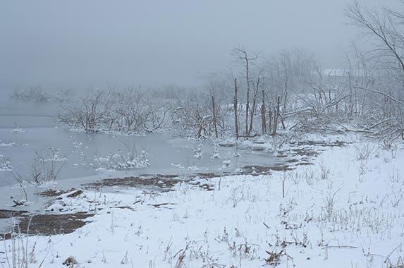 8. Arkansas | © Ross Ellet Shutterstock.com