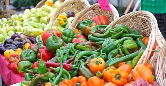 Local farmers market: Palm Beach Gardens GreenMarket © iStock