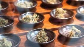 The 7 best cities to launch your career if you like to smoke marijuana
