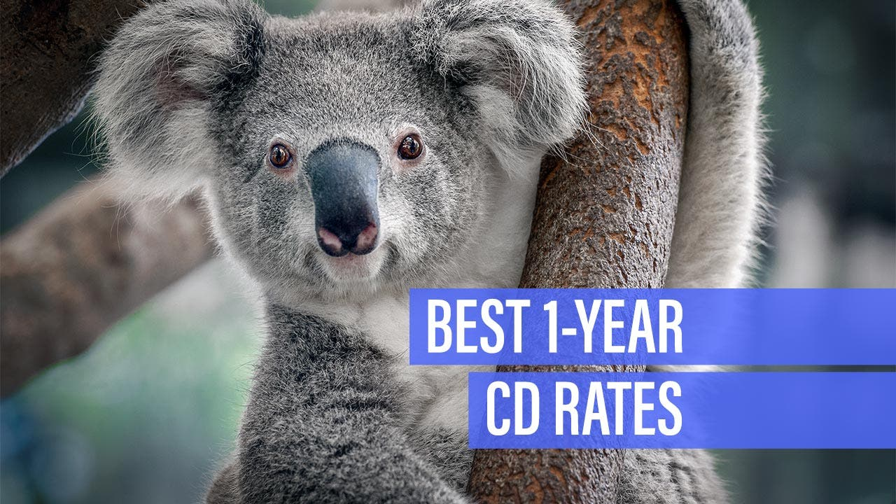 Best 1-Year Credit Union CD Rates | Bankrate