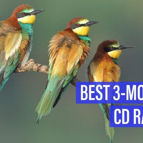 Best 3-month CD rates — November 2019