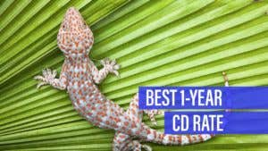 Synchrony Bank offers the best 1-year CD rate