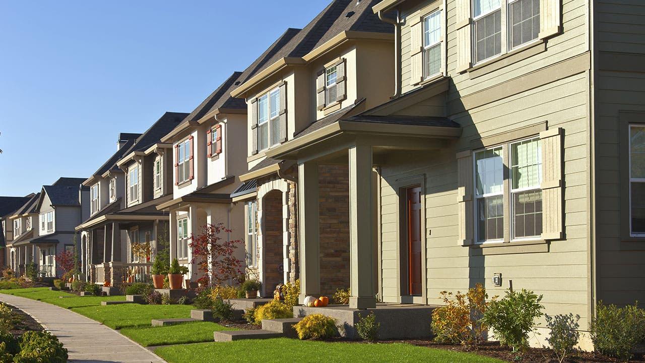 Suburb houses on a sunny day