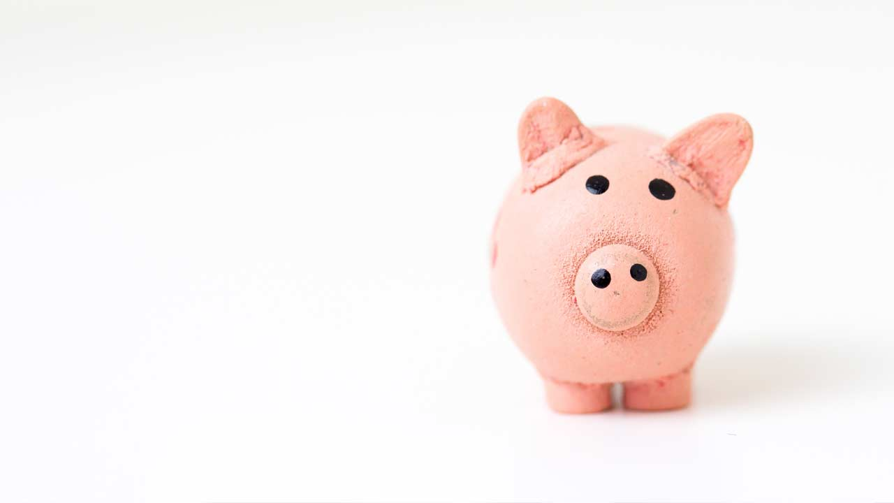 Piggy bank in pink with white background
