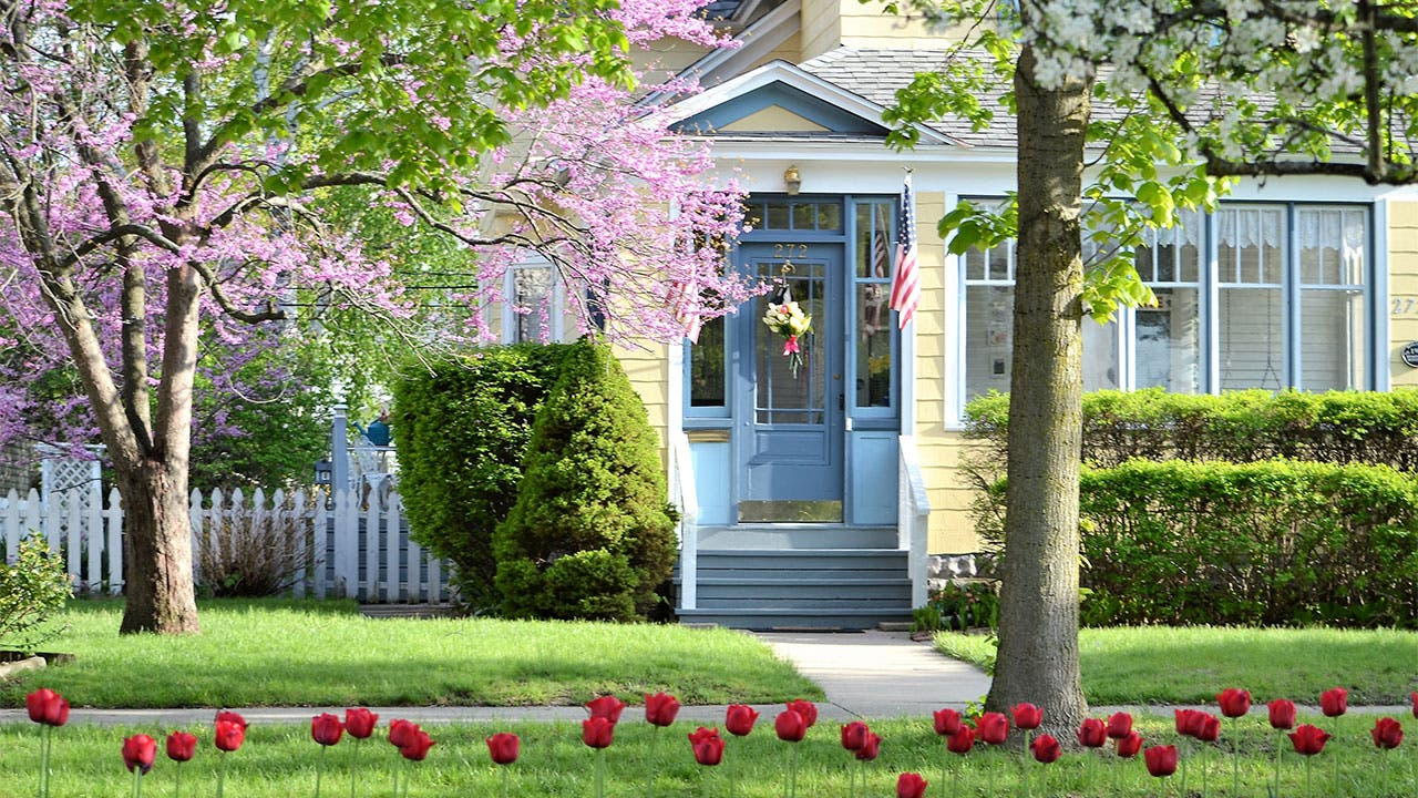 House with cherry tree blossoms