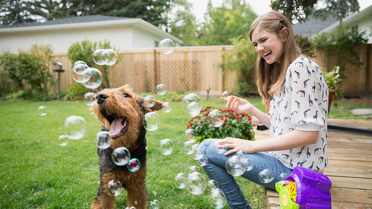 Woman and dog playing with bubbles