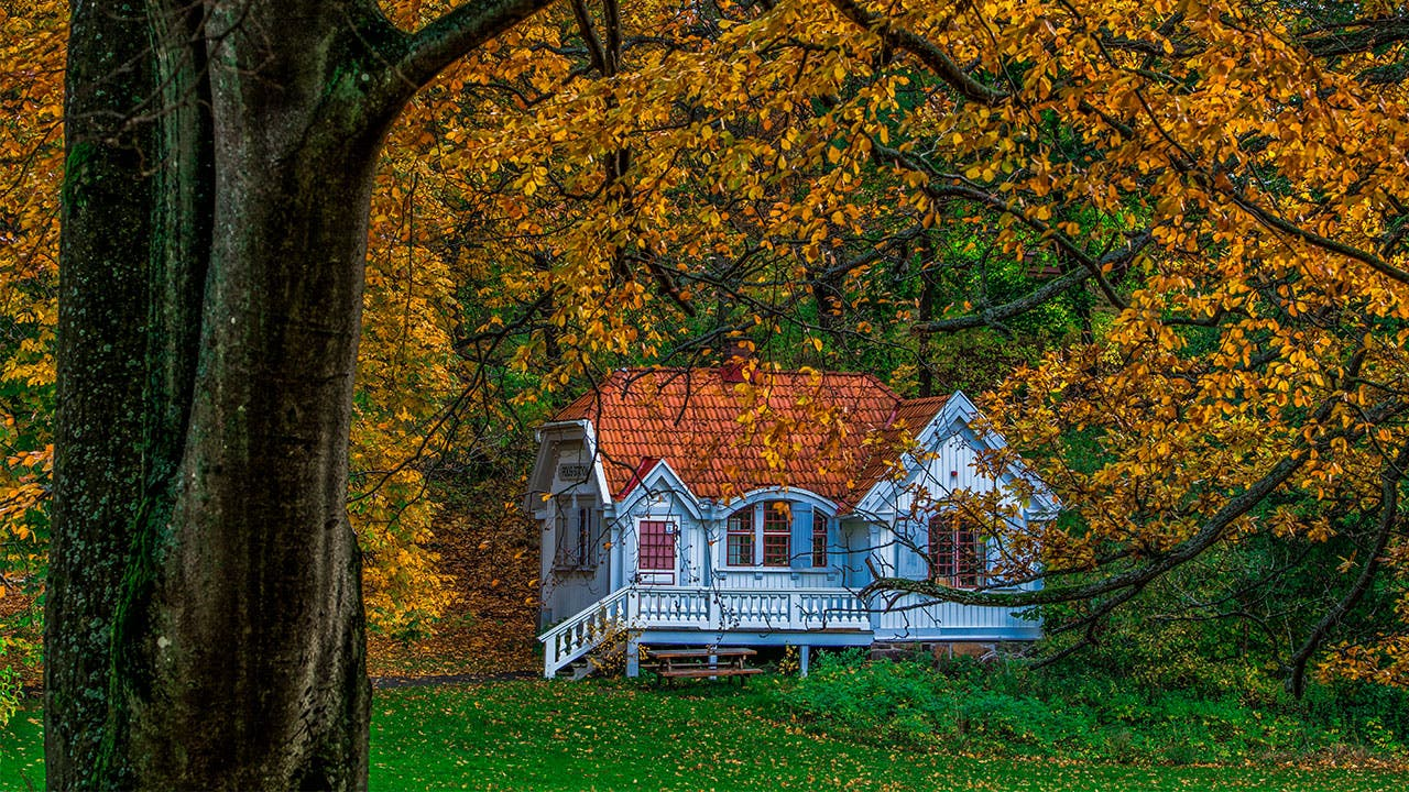 House in the woods in Fall