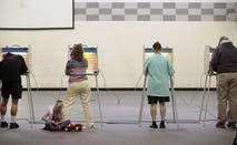 Voters voting in Midterm election