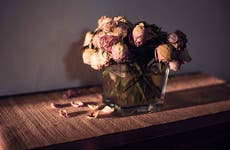 Wilted rose bouquet