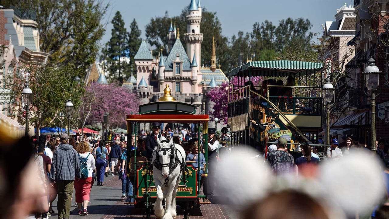 Horse drawn carriage in Disneyland