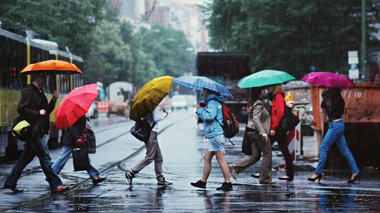 Americans crossing the street in the rain
