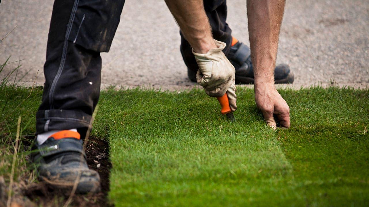 Man landscaping