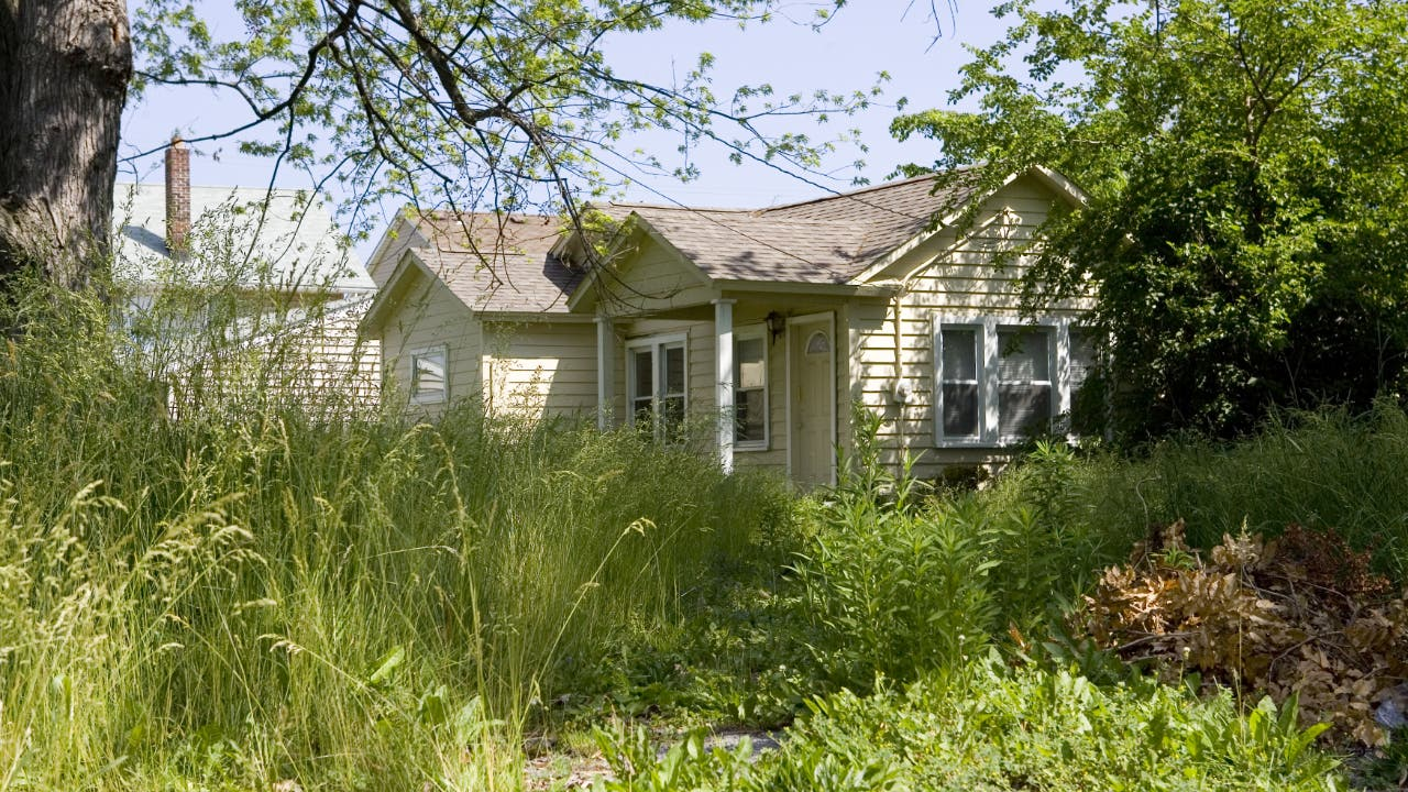 A house with overgrown grass and weeds