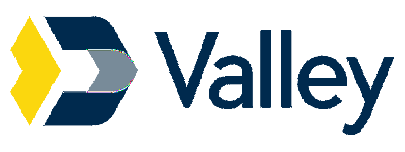 Valley National Bank Review 2020