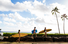 Surfers carrying surf boards to the Hawaiian beach