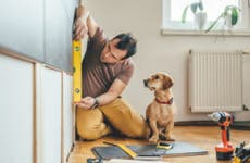 Man works on home renovation while dog watches.