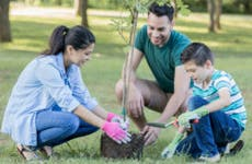 Family planting trees in a park.