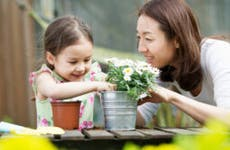 Mixed-race Asian girl and her Asian mother are potting a plant and enjoying the weather outdoors.